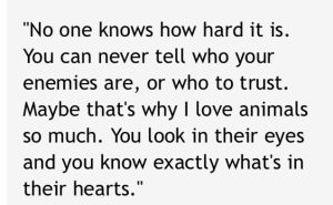 zookeeper quote